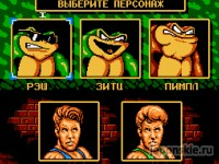 Играть в игру Battletoads And Double Dragon онлайн