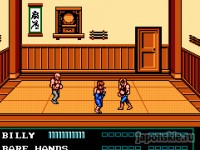 Играть в игру Double Dragon 3 The Rosetta Stone онлайн