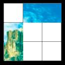 Polyomino puzzles