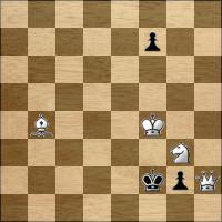 Шахматная задача №125888