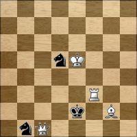 Шахматная задача №126066
