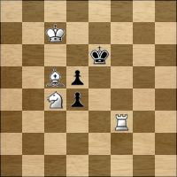Шахматная задача №126330