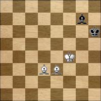 Шахматная задача №126575
