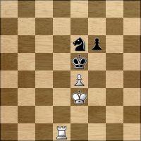 Шахматная задача №128137