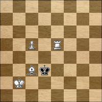 Шахматная задача №160561
