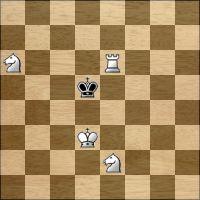 Шахматная задача №160687