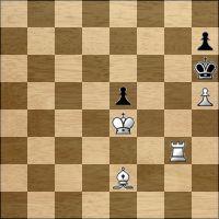 Шахматная задача №163705