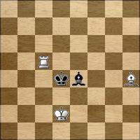 Шахматная задача №164334