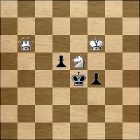Шахматная задача №164851