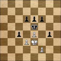 Шахматная задача №165098