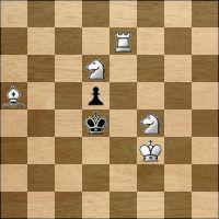 Шахматная задача №166097