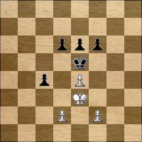 Шахматная задача №166524