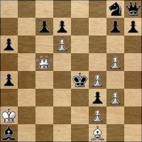 Шахматная задача №170295