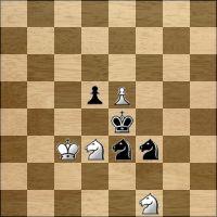 Шахматная задача №171521