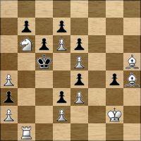 Шахматная задача №176494