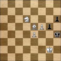 Шахматная задача №204406