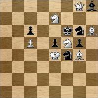 Шахматная задача №214320