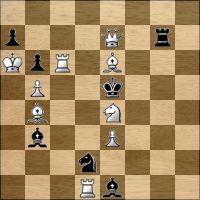 Шахматная задача №221410