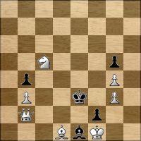 Шахматная задача №239033