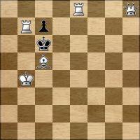 Шахматная задача №281485