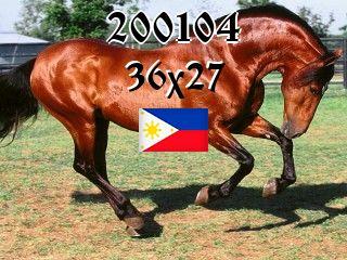 Филиппинский пазл №200104