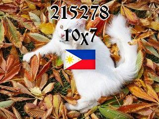 Филиппинский пазл №215278