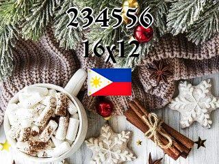 Филиппинский пазл №234556