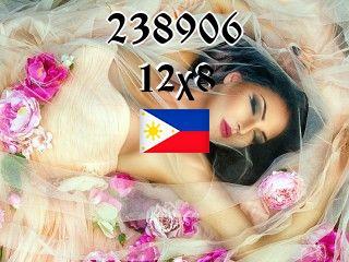 Филиппинский пазл №238906