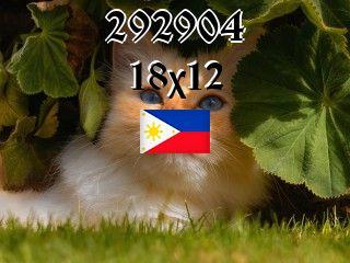 Филиппинский пазл №292904
