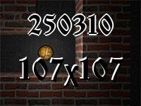 Лабиринт №250310