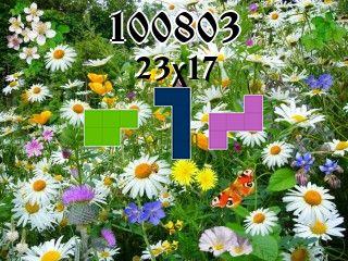 Пазл полимино №100803