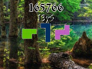 Пазл полимино №165766