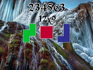 Пазл полимино №234563