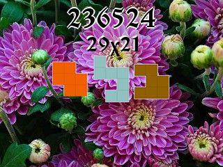 Пазл полимино №236524