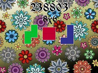 Пазл полимино №238803