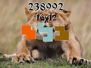 Пазл полимино №238992