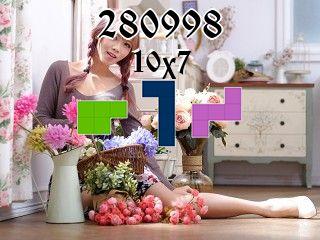 Пазл полимино №280998