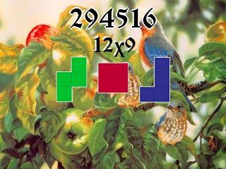 Пазл полимино №294516
