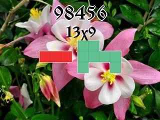 Пазл полимино №98456