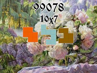 Пазл полимино №99078