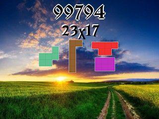Пазл полимино №99794