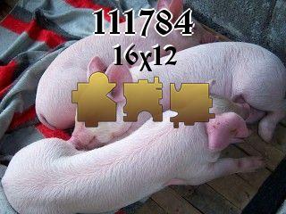 Пазл №111784