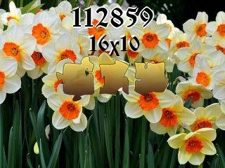 Пазл №112859