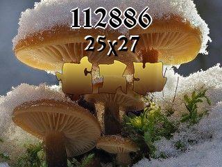 Пазл №112886