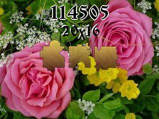 Пазл №114505