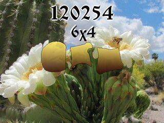 Пазл №120254