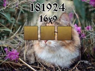 Пазл №181924