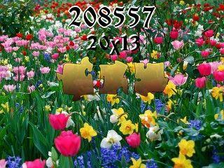 Пазл №208557