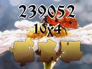 Пазл №239052