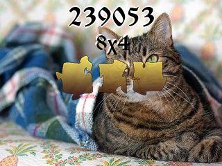 Пазл №239053
